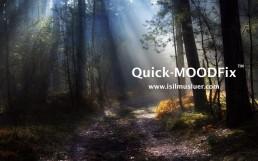 Quick Mood Fix Olumsuz Duyguları Hızla Değiştirme | Ayrıntılar icin https://www.isilmusluer.com/quick-moodfix/